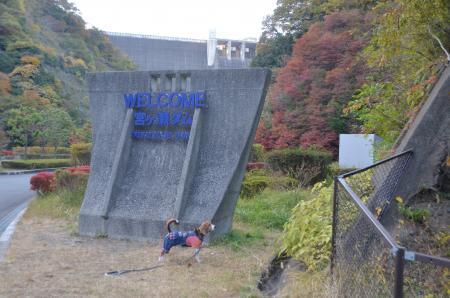 20131123宮ケ瀬ダム03