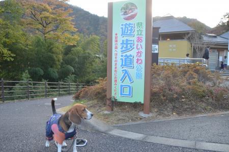 20131123宮ケ瀬ダム01