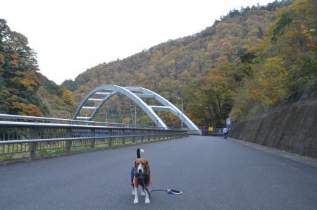 20131123宮ケ瀬ダム10