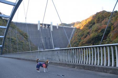 20131123宮ケ瀬ダム07