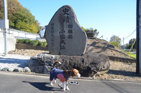 20131123小松城址02