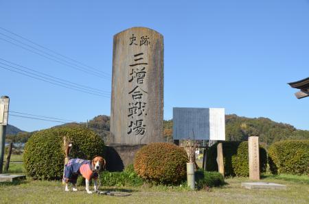 20131123三増合戦場跡03