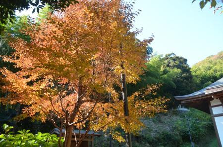 20131123小沢古城址17