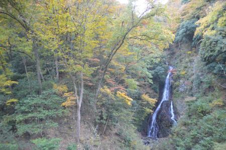 20131123大沢の滝06