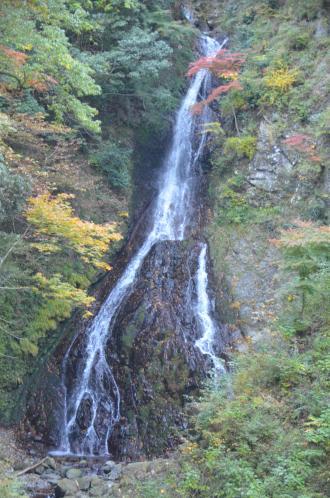 20131123大沢の滝05