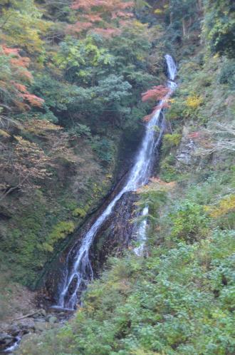 20131123大沢の滝11