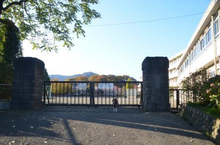 20131123半原小学校18