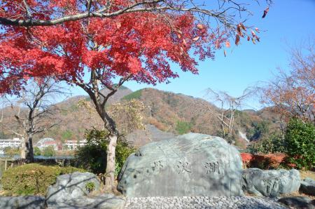 20131129丹沢湖01