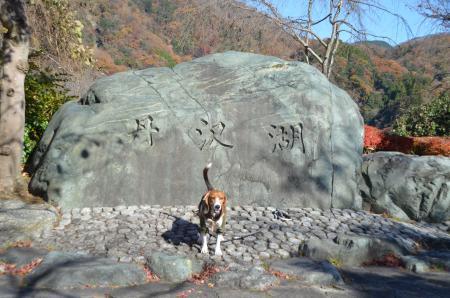20131129丹沢湖02