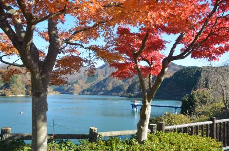 20131129丹沢湖07