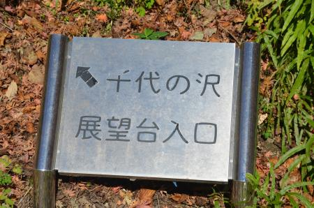 20131129丹沢湖14