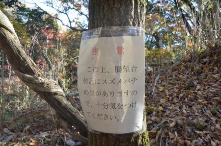 20131129丹沢湖19