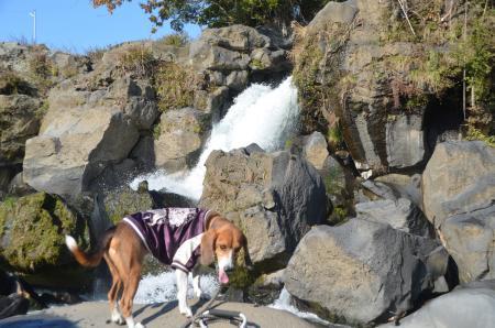 20131203鮎壷の滝06