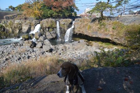 20131203鮎壷の滝03