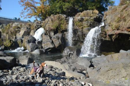20131203鮎壷の滝09