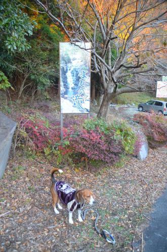20131203みよし滝01