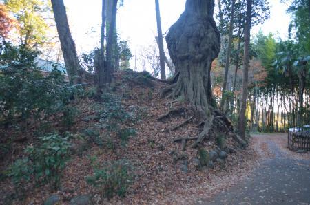 20131216三田氏館跡20