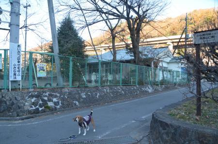 20131216浅川小学校上長房小学校07
