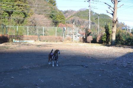 20131216浅川小学校案内分校06