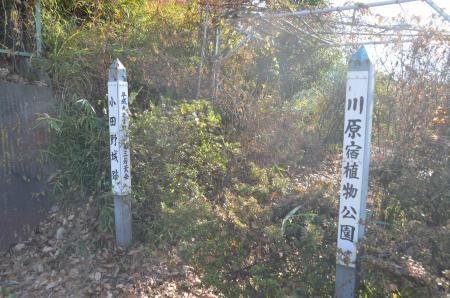 20131216小田野城址14