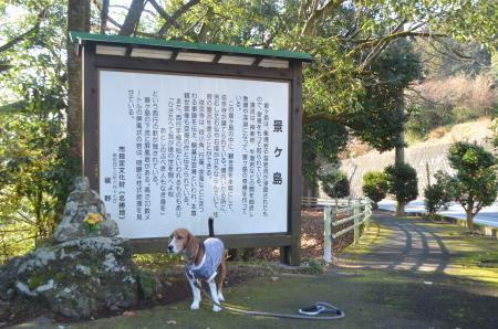 20131224景ヶ島渓谷02
