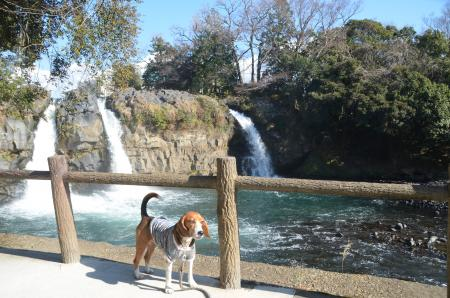 20131224五竜の滝07