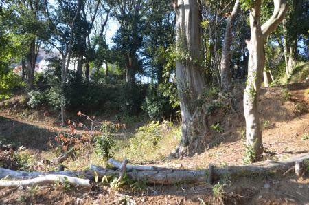 20131225伊東公園10