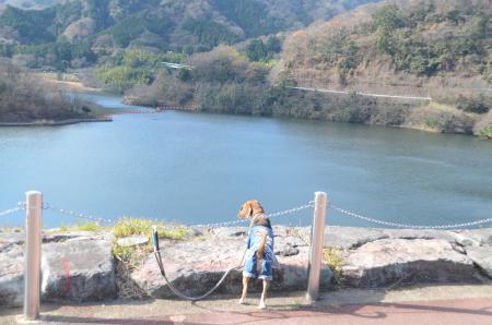 20131225松原湖13