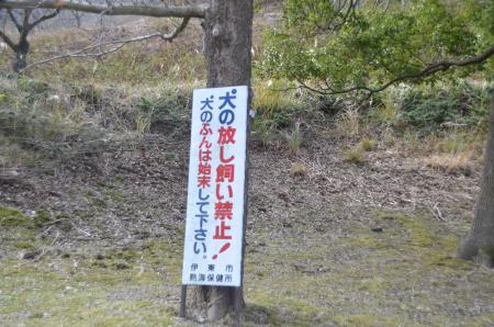 20131225松原湖23