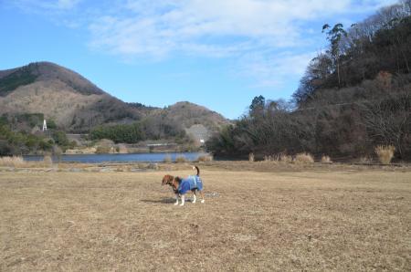 20131225松原湖21
