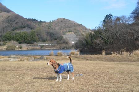 20131225松原湖22