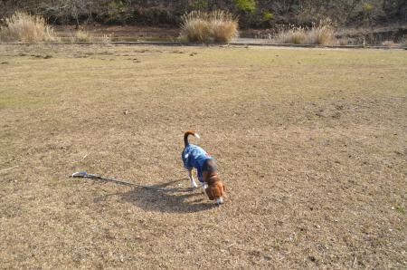 20131225松原湖20