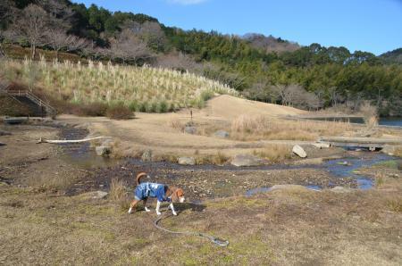 20131225松原湖19