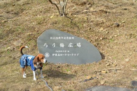 20131225松原湖26