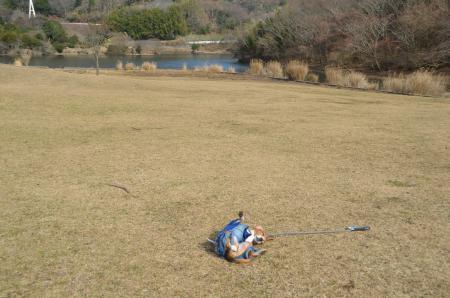 20131225松原湖25