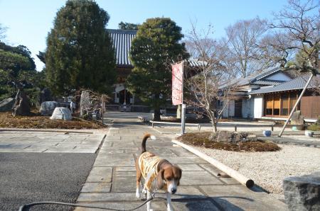 20140101七福神巡り10