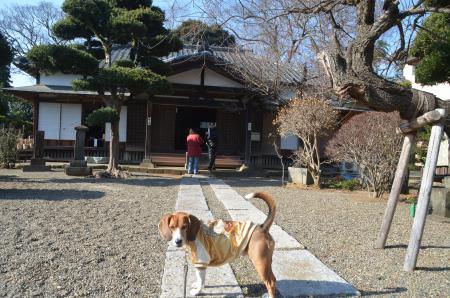 20140101七福神巡り24