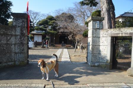 20140101七福神巡り21