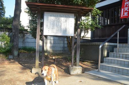 20140101七福神巡り31