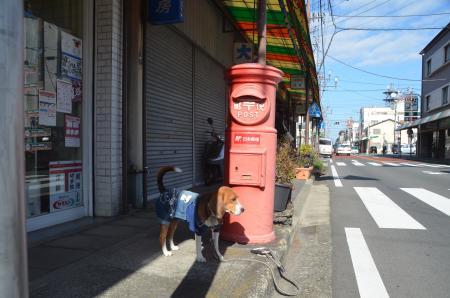 20131225丸ポスト伊東Ⅱ11