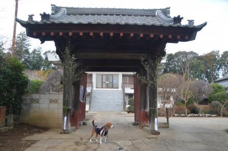 20140104印旛七福神①02