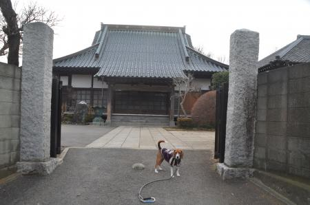 20140104印旛七福神②06