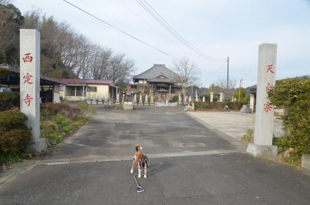 20140104印旛七福神③04