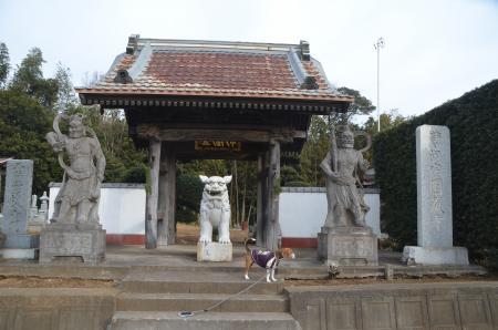 20140104印旛七福神④01