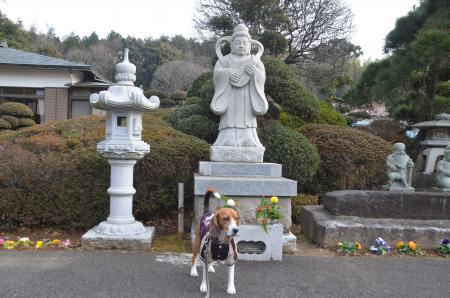 20140104印旛七福神⑤05