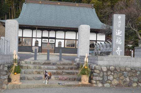 20140104印旛七福神⑤02