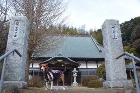 20140104印旛七福神⑥02