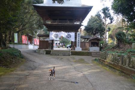 20140104印旛七福神⑦02