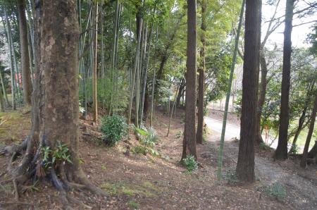 20140104印旛七福神⑦09