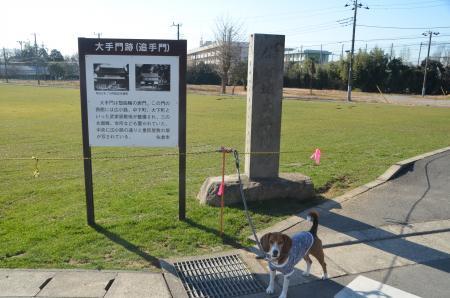 20140111佐倉城址公園22